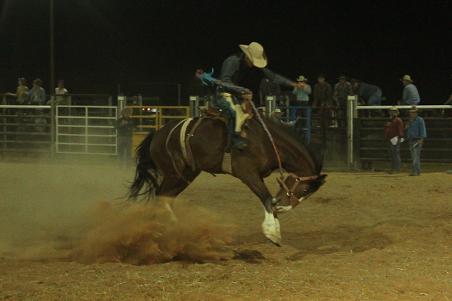 Bronc ride Birdsville Rodeo