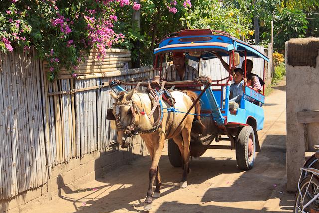 Transport Cidomo