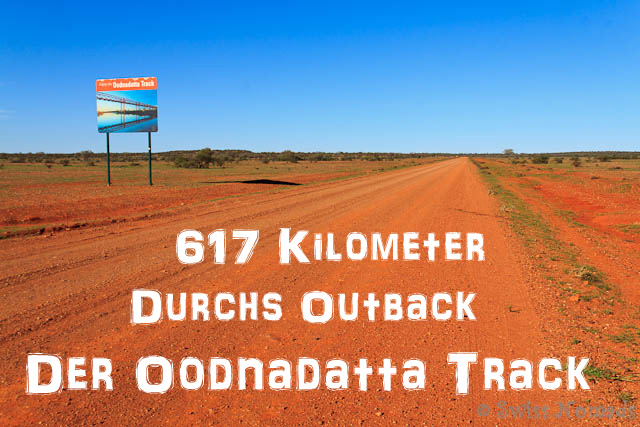 oodnadatta track der outback track entlang der wasserquellen swiss nomads. Black Bedroom Furniture Sets. Home Design Ideas