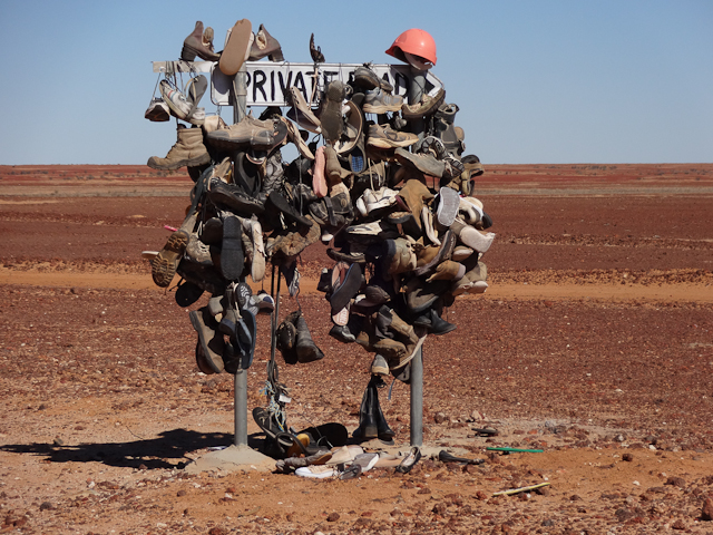 Schuhbaum im Outback