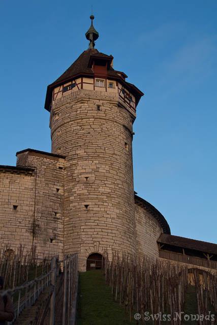 Munot in Schaffhausen