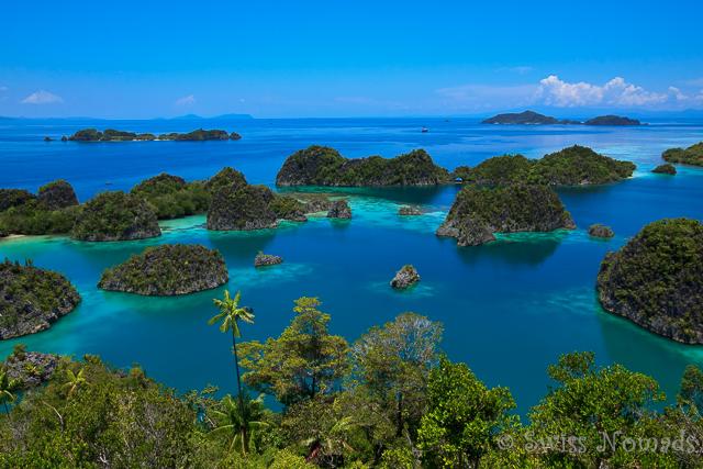 Die Raja Ampat Tagestour zu den Fam Inseln ist grossartig