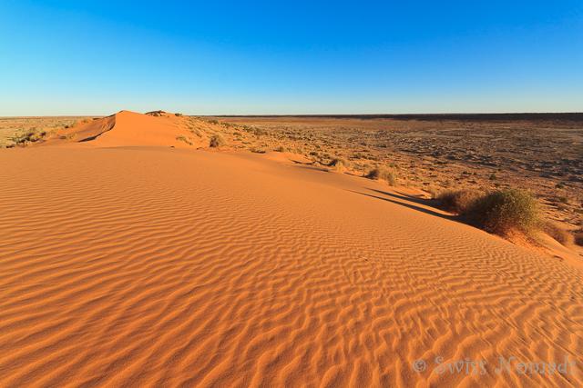 Die Simpson Desert in Australien