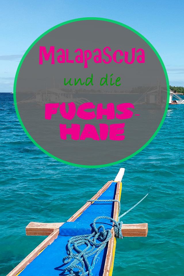 Malapascua Fuchshaie