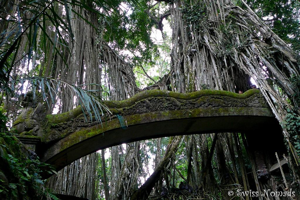 Brücke im Affenwald in Ubud
