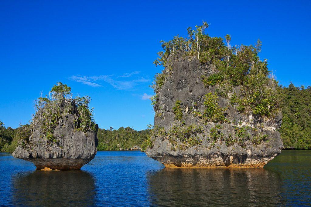Kalksteinfelsen in Raja Ampat