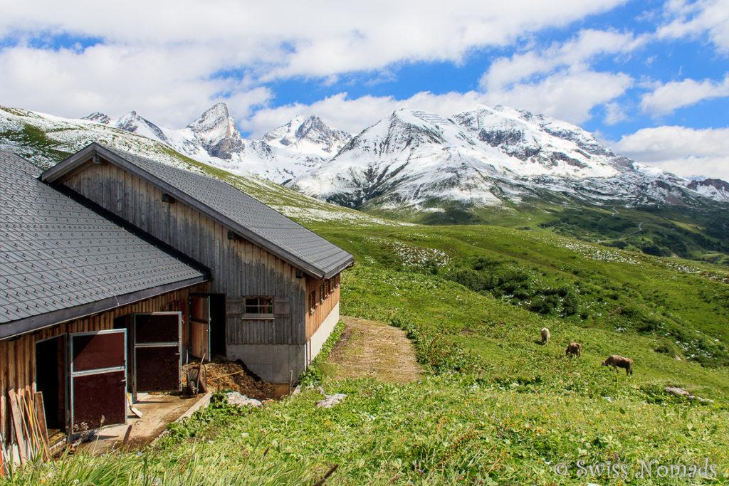 Die Alpe Monzabon beim Wandern in Lech auf dem Grünen Ring