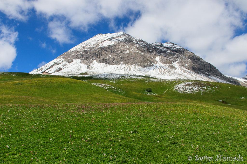 Verschneite Berge und grüne Wiesen beim Wandern in Lech auf dem Grünen Ring