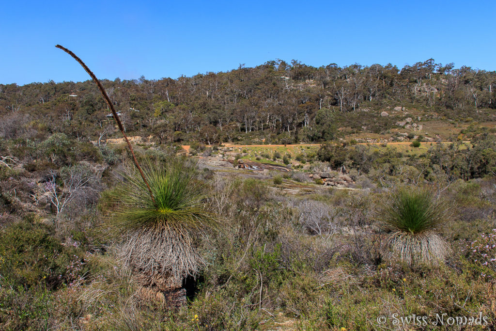 John Forrest Nationalpark