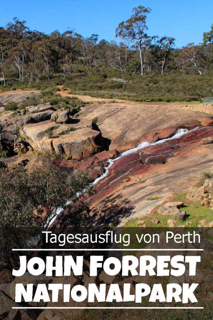 Der John Forrest Nationalpark bei Perth in Australien