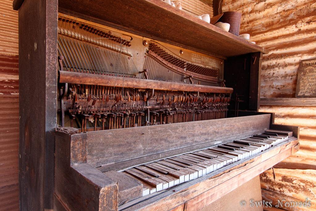 Auch für Musikalische Unterhaltung war in Gwalia gesorgt