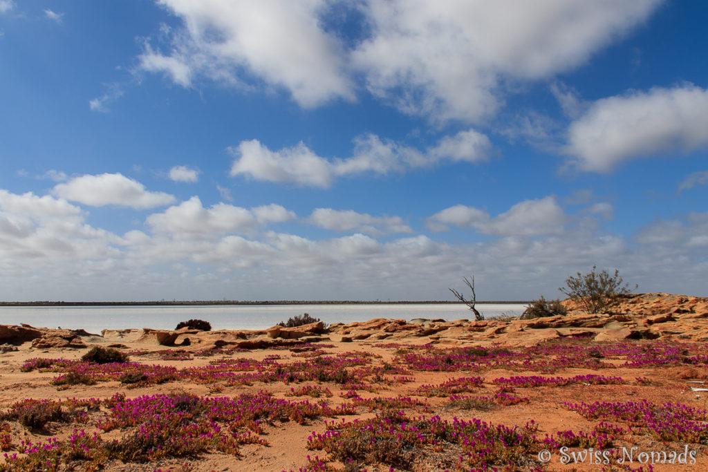 Lake Koorkoordine Australien