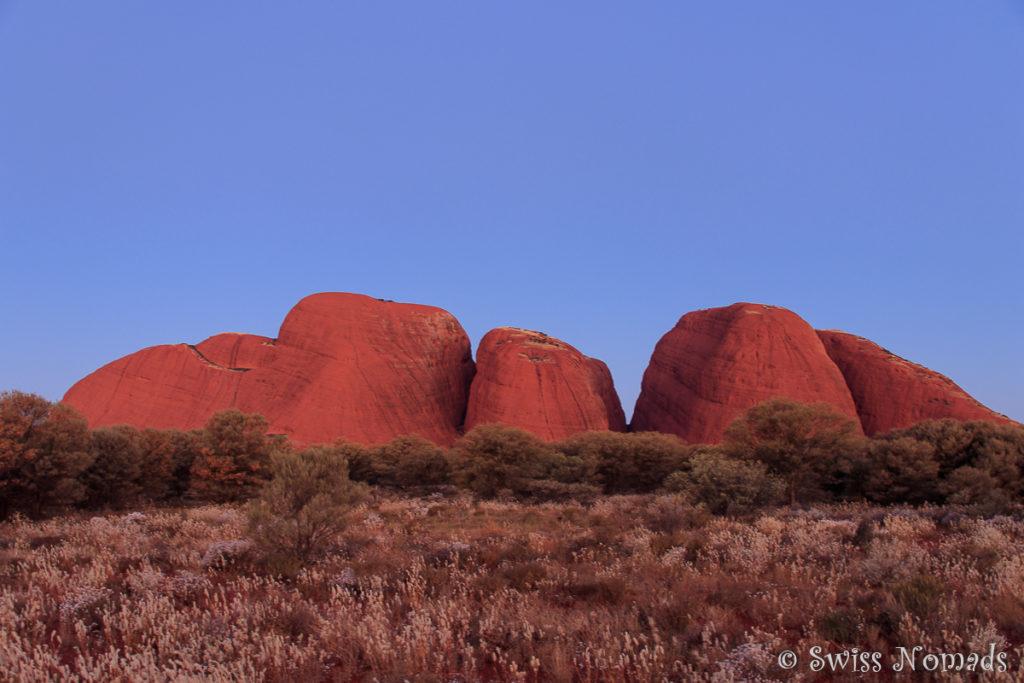 Die Felsen von Kata Tjuta ändern ihre Farbe während des Sonnenuntergangs