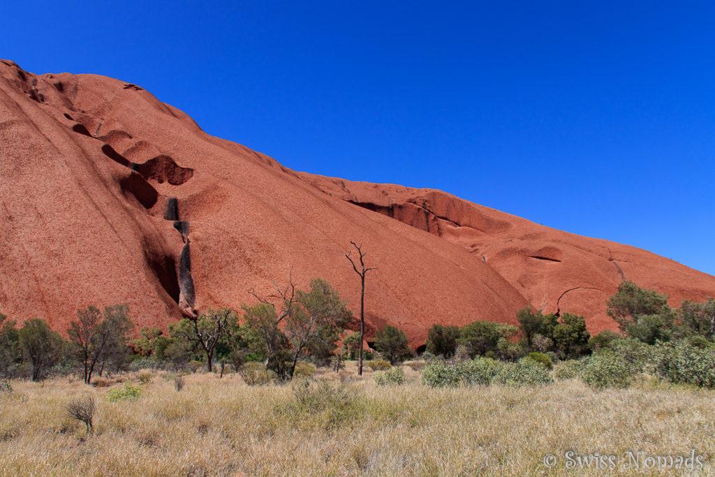 Der Uluru Base Walk ist eine grossartige Möglichkeit diesen riesigen Felsen zu erkunden