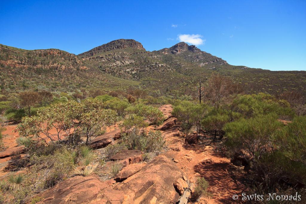 Auf dem Wanderweg im Ikara-Flinders Ranges Nationalpark