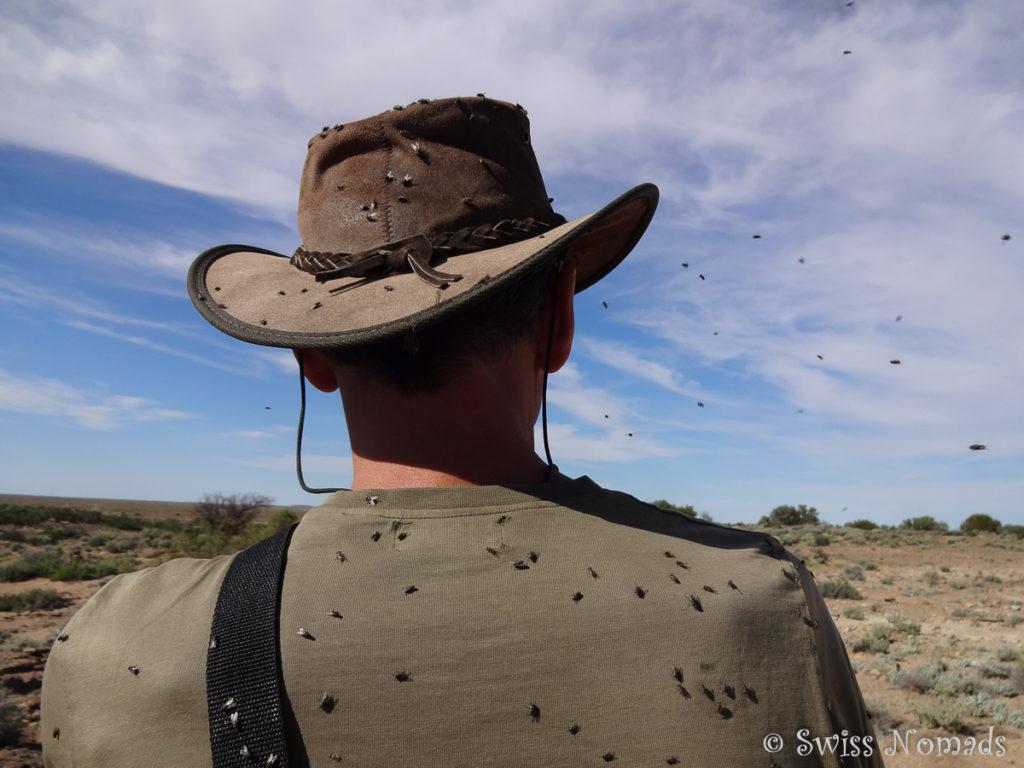 Fliegenplage Australien