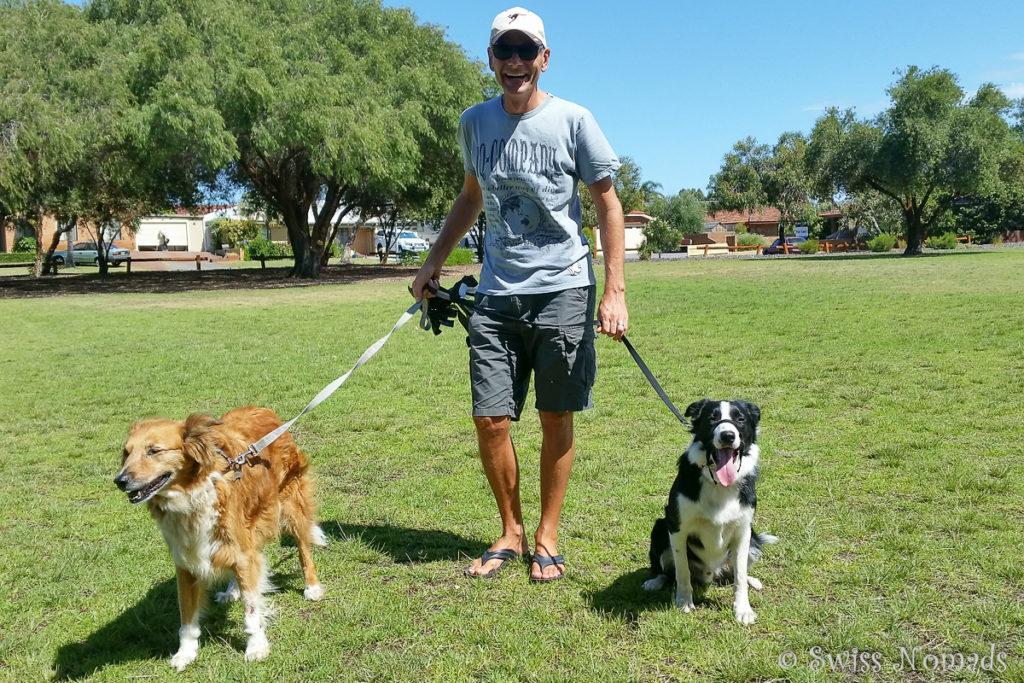 Haussitting Aufgabe Hunde Gassi führen