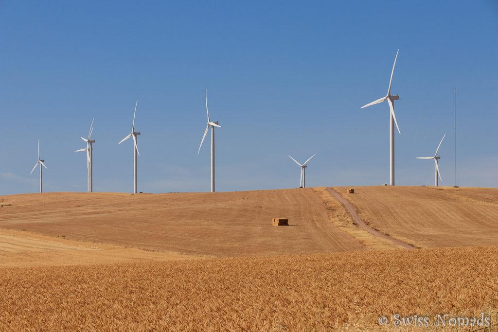 Windfarm auf der Yorke Halbinsel