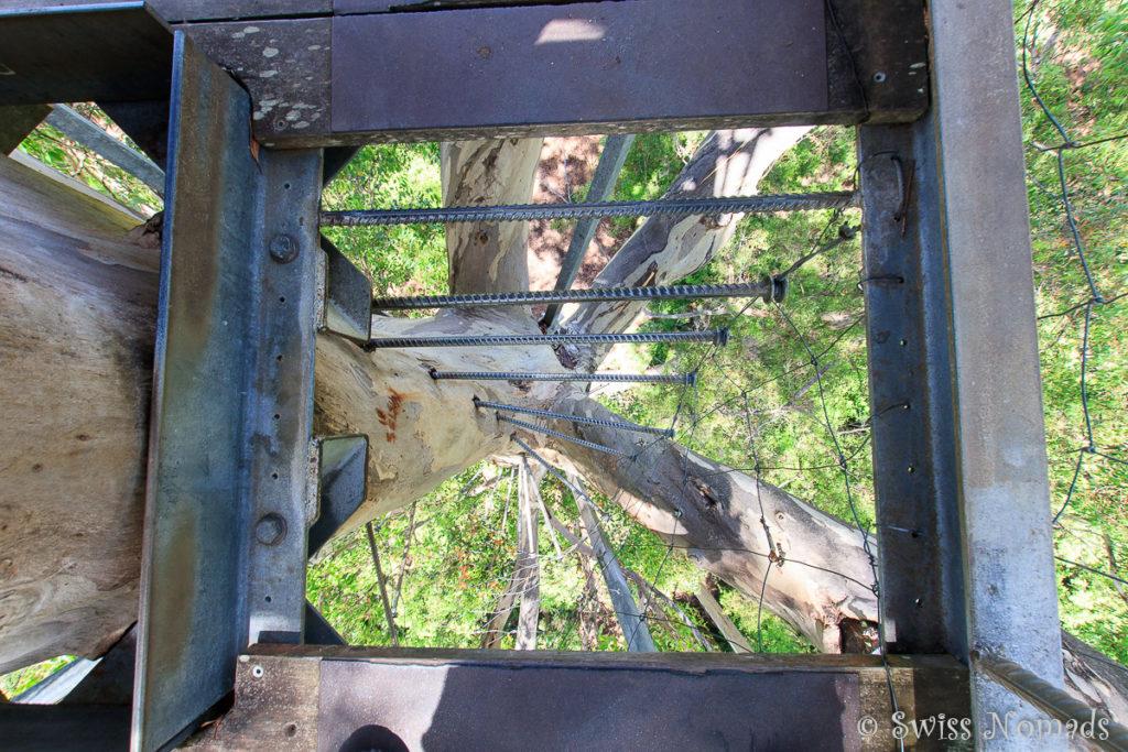 Durch die lucke geht es wieder auf die Eisenstangen