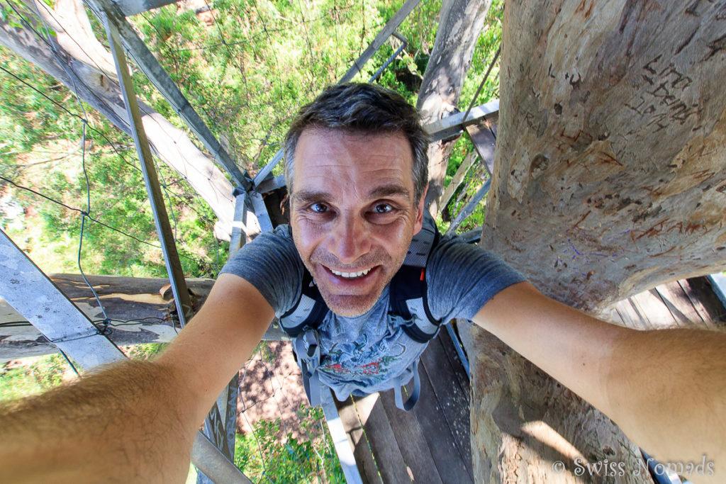 Marcel auf dem Riesenbaum bei Pemberton