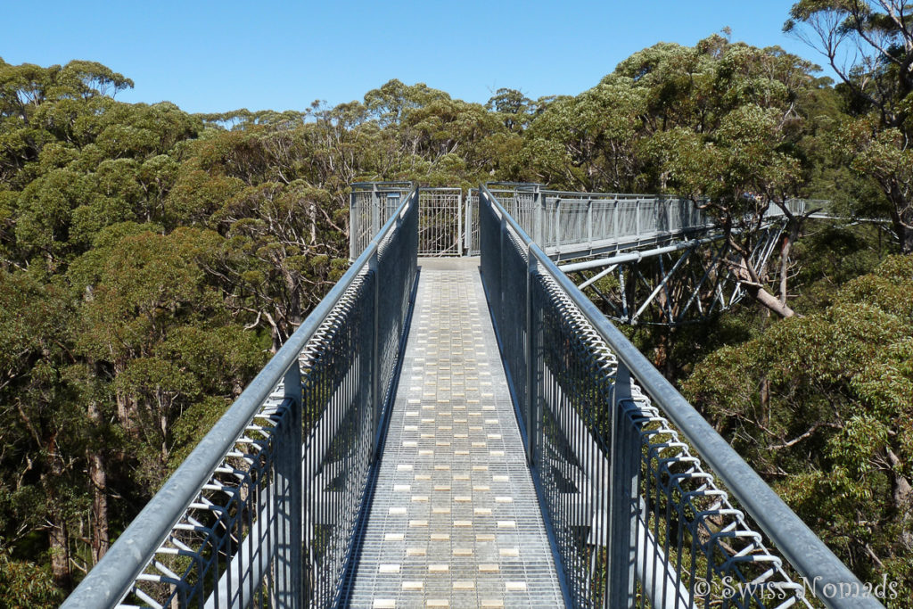Tree Top Walk im Valley of the Giants im Walpole-Nornalup Nationalpark