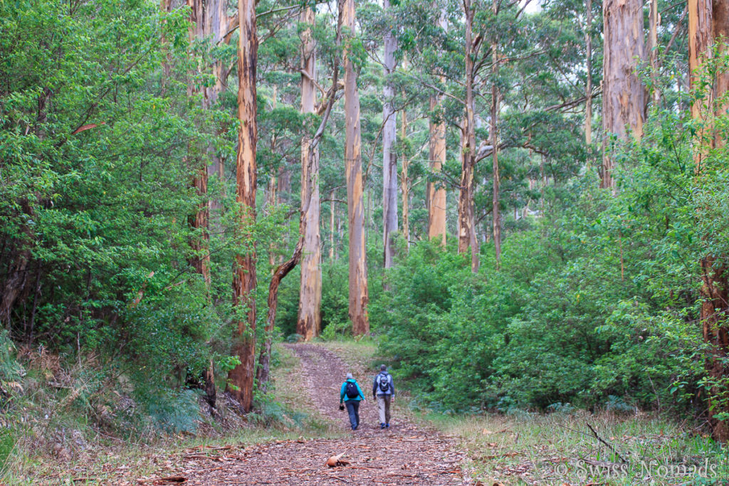 Wandern Porongurup Nationalpark