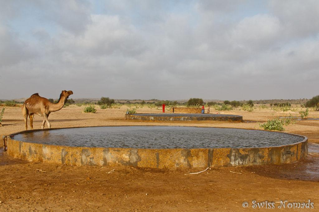 Der Dorfbrunnen in der Thar Wüste in Rajasthan