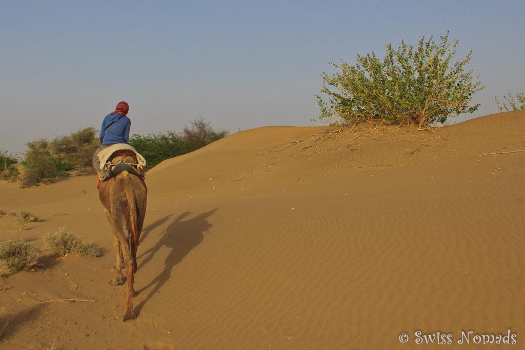 Beim Kamelreiten in der Thar Wüste in Rajasthan
