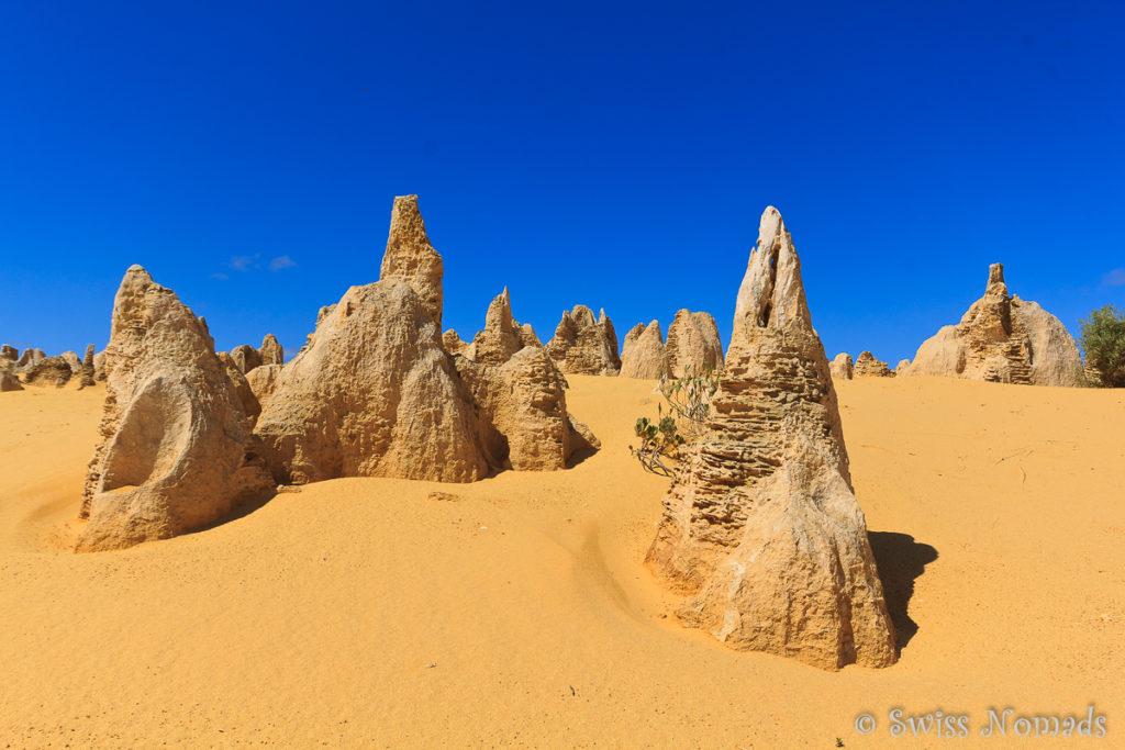 Pinnacles Desert im Nambung Nationalpark