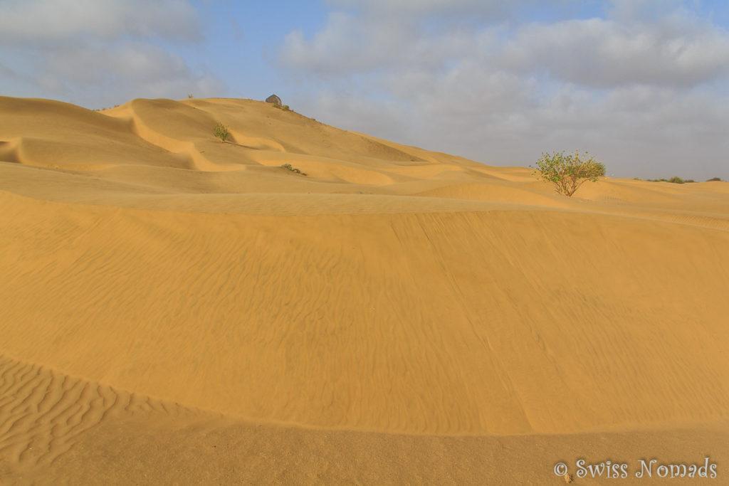Riesiger Sandberg in der Thar Wüste in Rajasthan