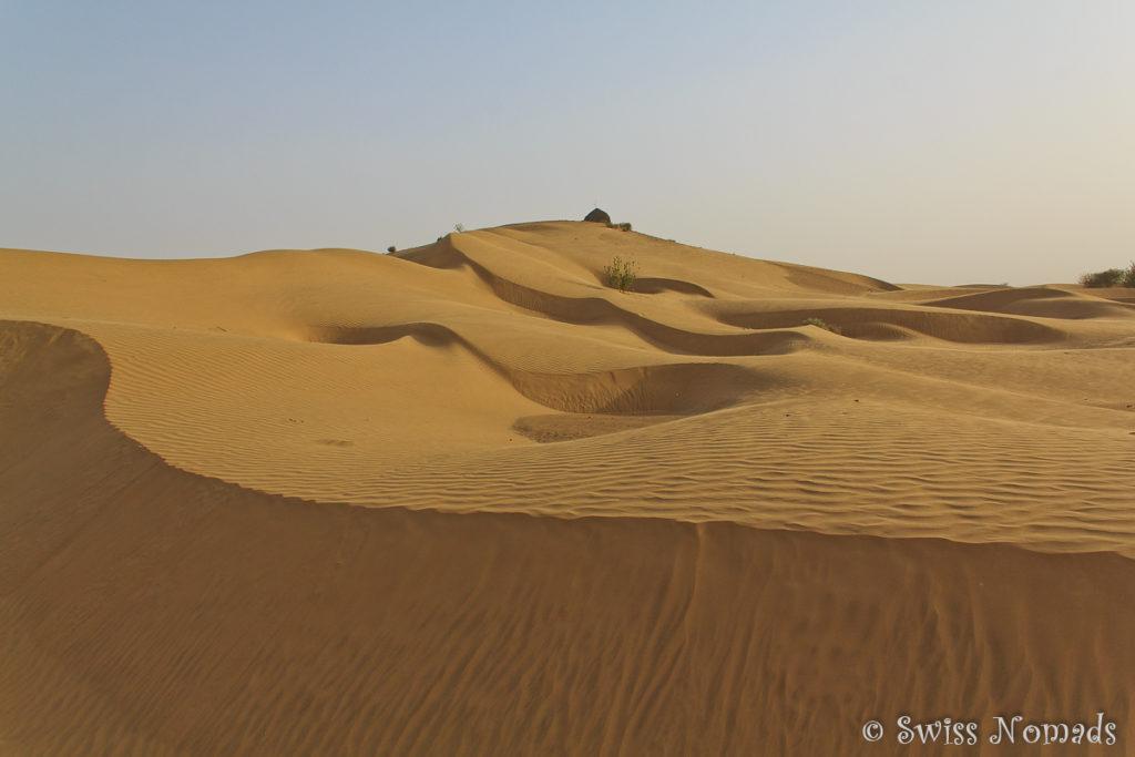 Die Sanddüne in der Thar Wüste in Rajasthan