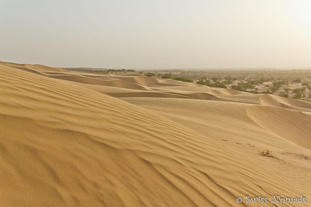 Die Sanddünen in der Thar Wüste in Rajasthan
