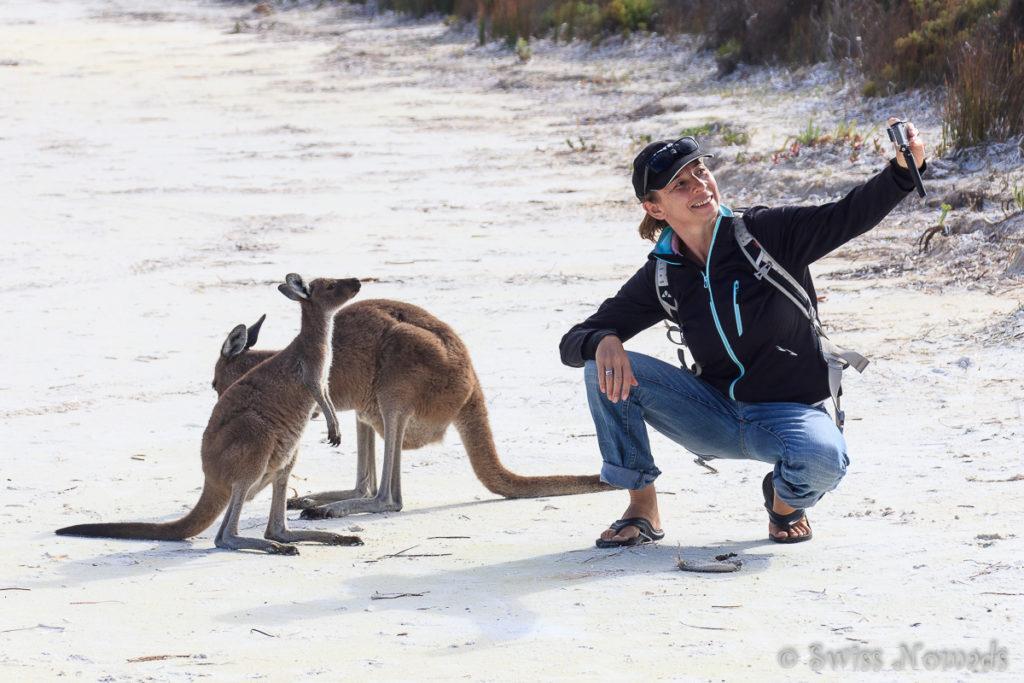 Selfie mit Känguru