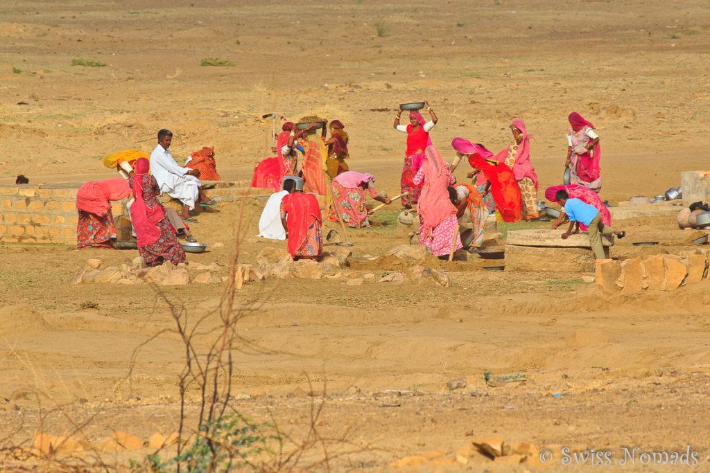 Treffpunkt am Wasser in der Thar Wüste