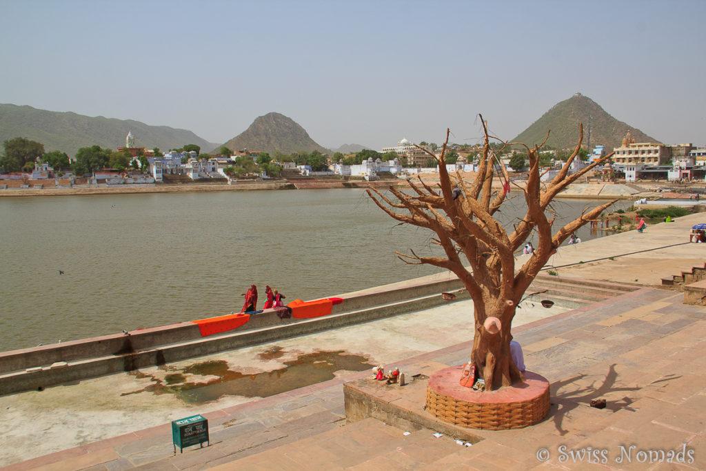 Waschen am heiligen Pushkar See