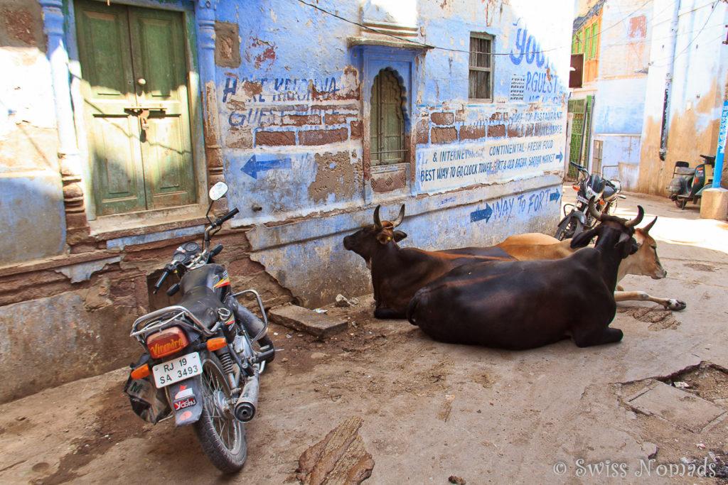 Auch die engen Strassen sind eine Sehenswürdigkeit in Jodhpur