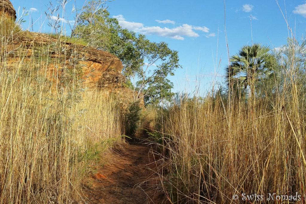 Gurrandalng Wanderung im Keep River Nationalpark