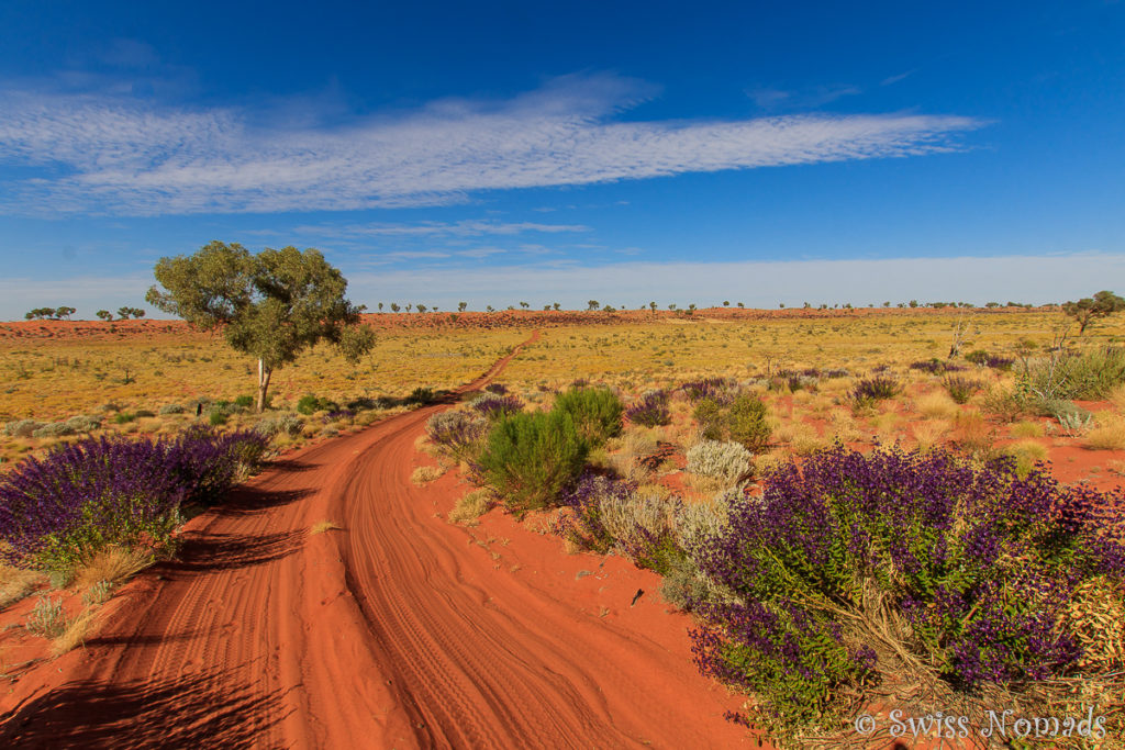 Canning Stock Route Outback Track