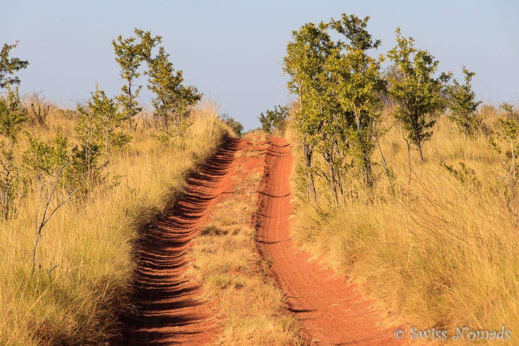 Track Canning Stock Route