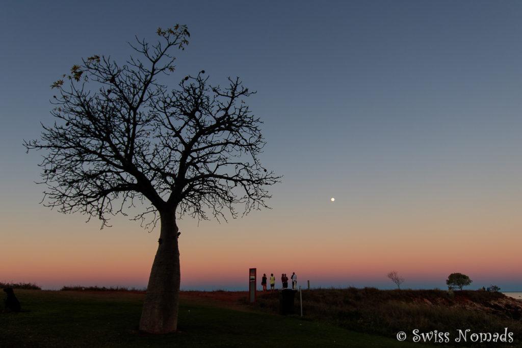 Broome Sonnenuntergang mit Affenbrotbaum