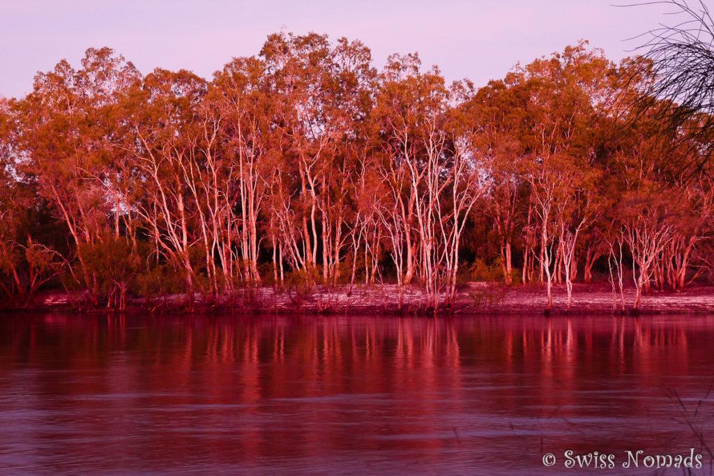 Unwirkliche Farben am Jardine River durch das Abendrot