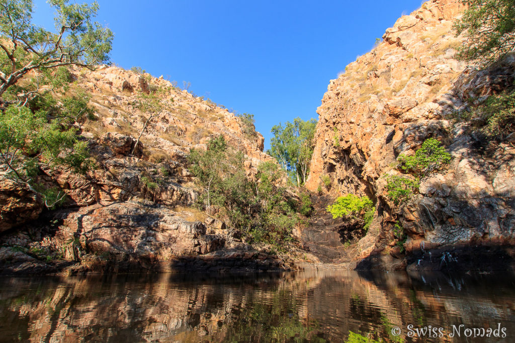 Wasserbecken der Butterfly Falls im Limmen Nationalpark