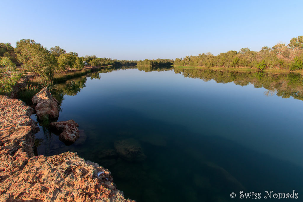 Morgenstimmung am Towns River im Limmen Nationalpark