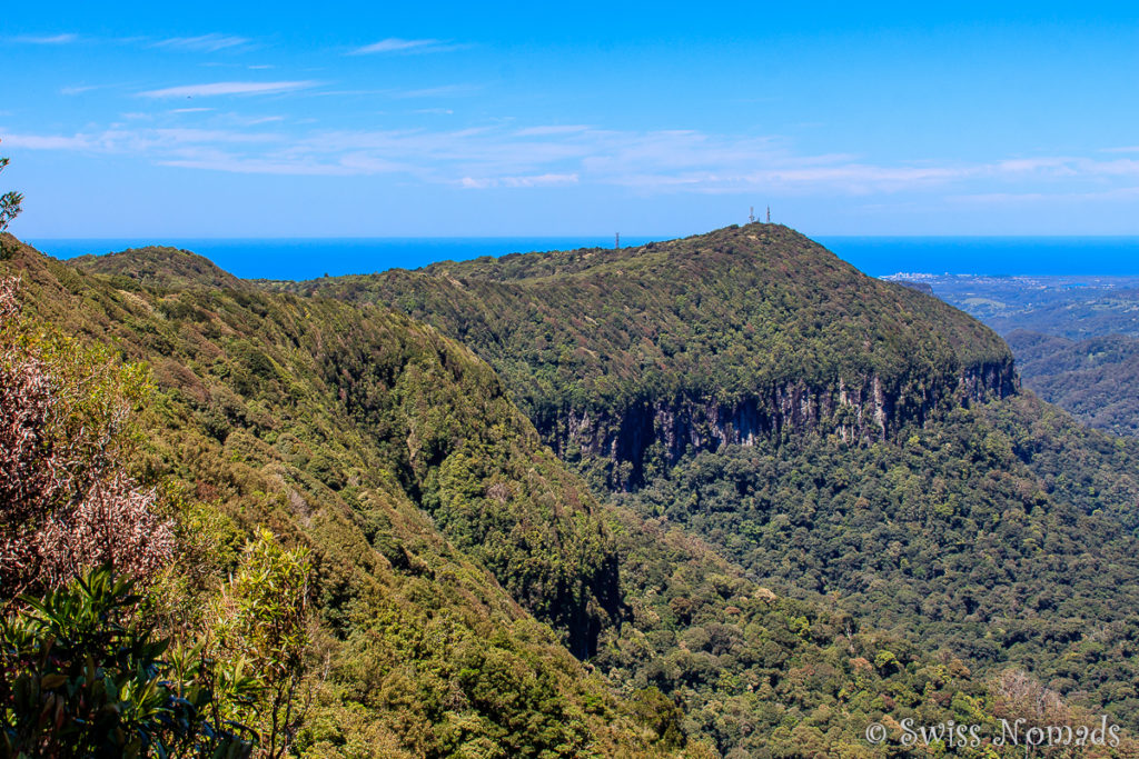 Springbrook Nationalpark Best of all Lookout