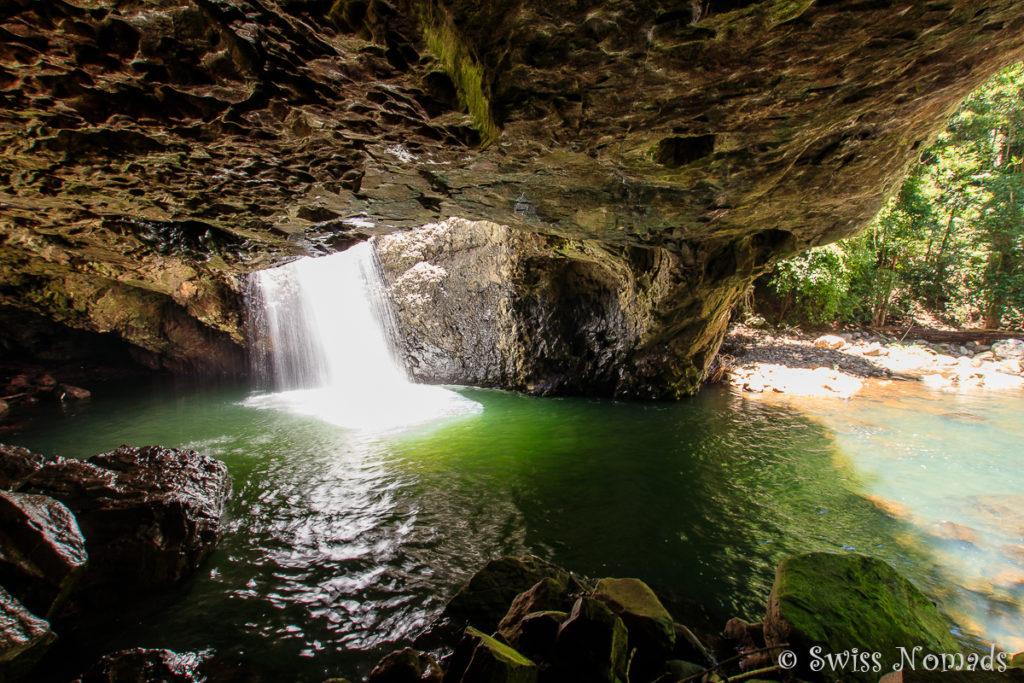 Natural Bridge Springbrook Nationalpark