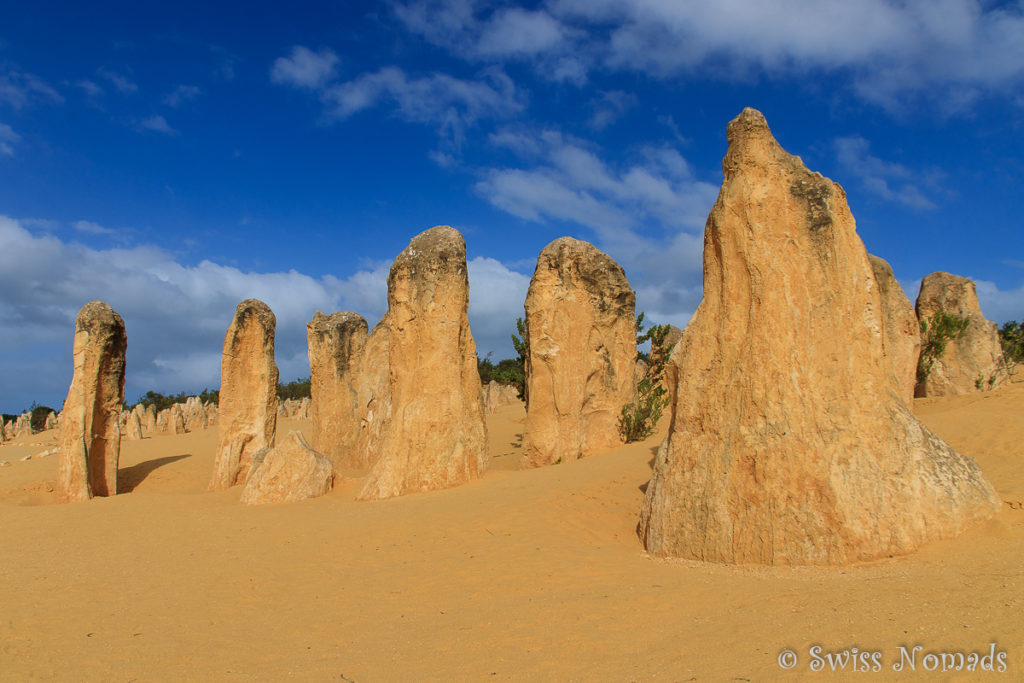 Die Pinnacles Desert im Nambung Nationalpark ist eines der Top 10 Westaustralien Highlight
