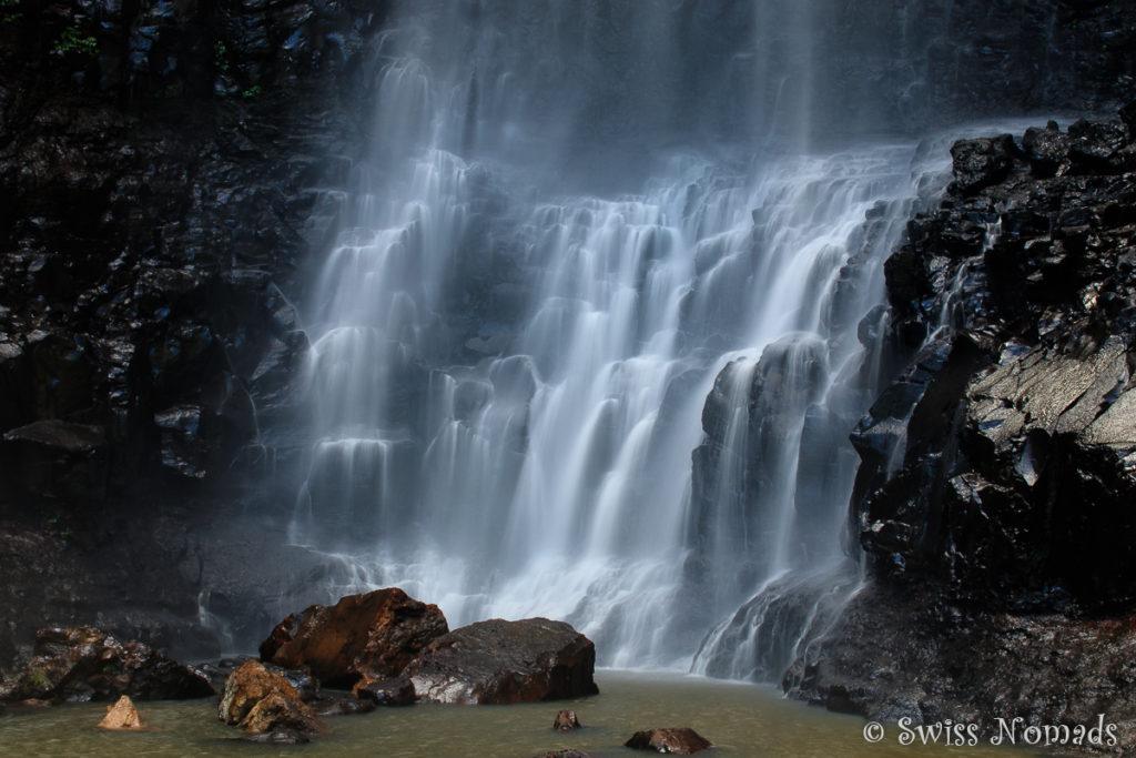 Purling Brook Falls in Australien
