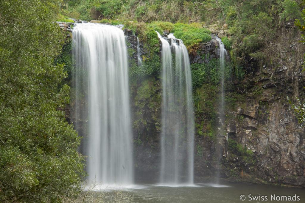 Die Dangar Falls entlang des Waterfall Way
