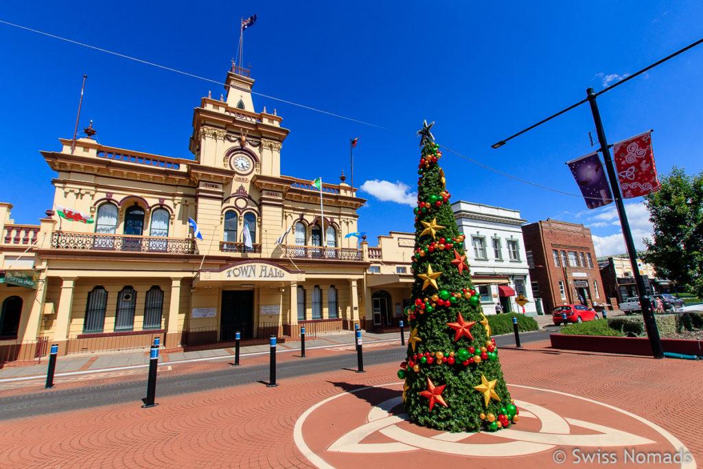 Weihnachtsbaum in Glen Innes auf dem Roadtrip von Brisbane nach Sydney
