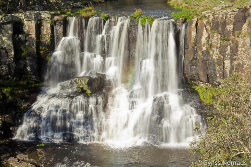 Die Upper Ebor Falls auf dem Roadtrip von Brisbane nach Sydney